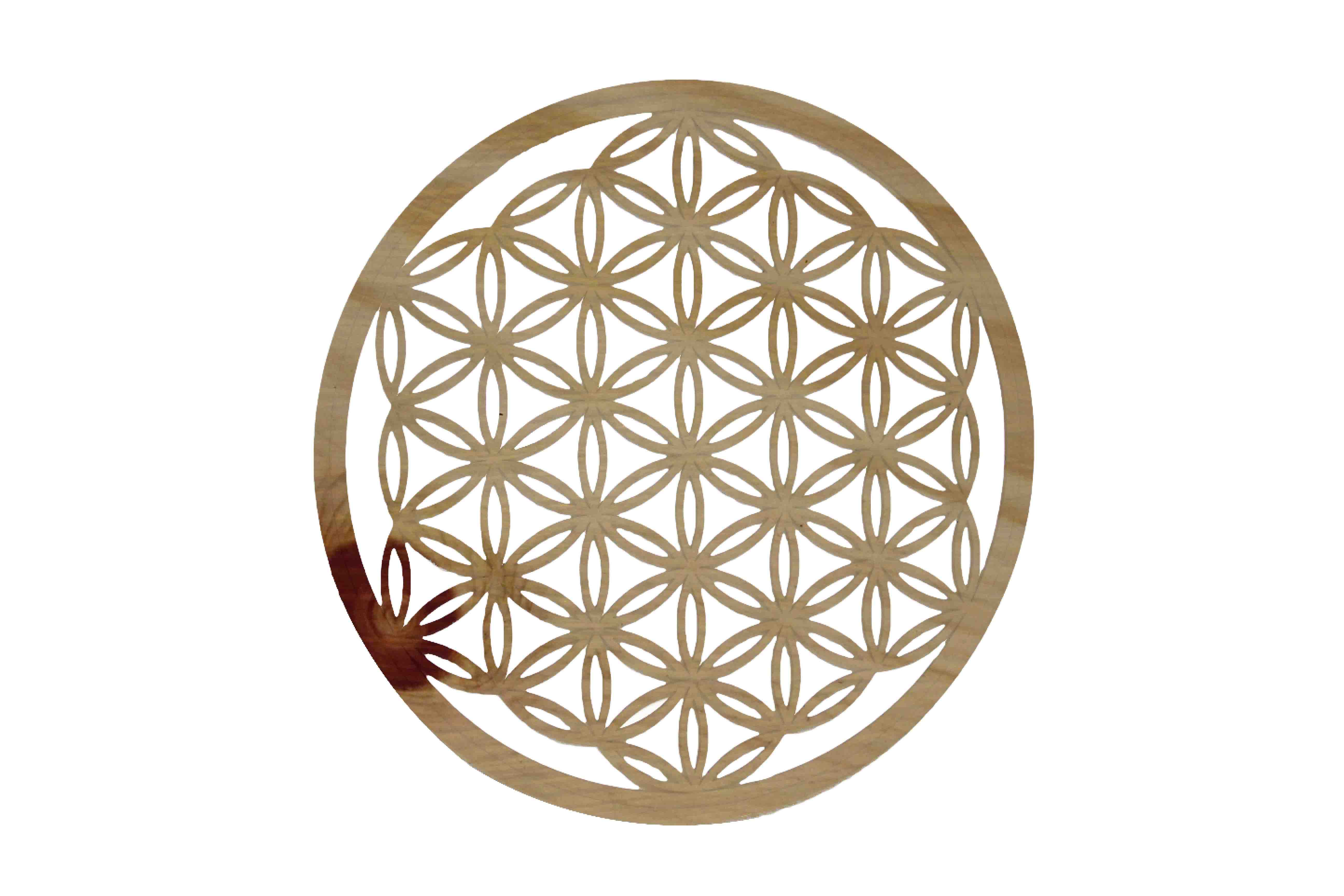 Blume des Lebens mit Klebefolie Zirbe